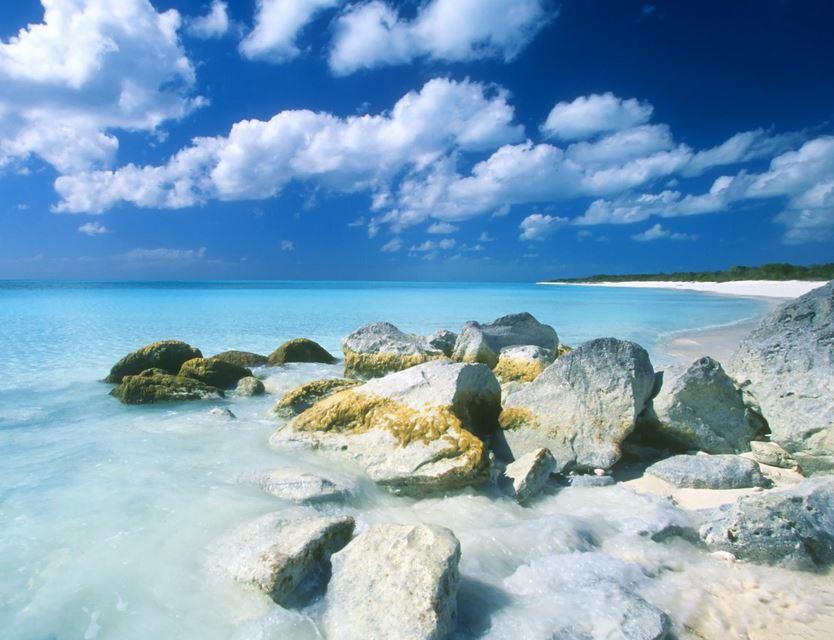 เกาะพาราไดส์